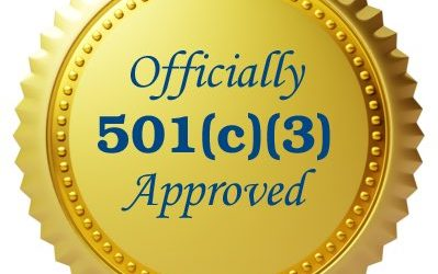 Fundraising in the USA – What is a 501(c)3?